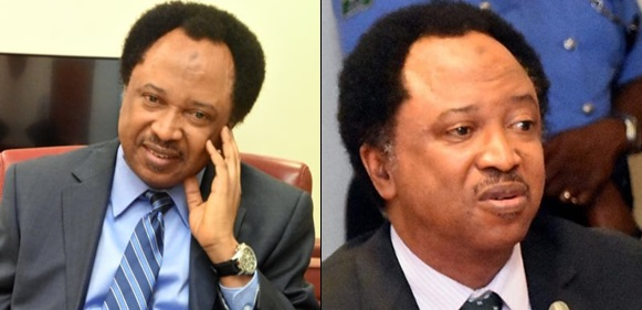 BREAKING: Senator Shehu Sani Dumps APC In Protest
