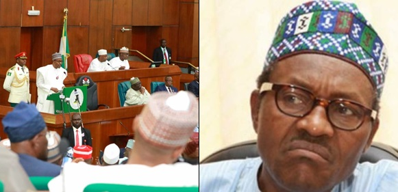 Apologize To Nigerians For 'booing' Buhari - NANS Tells National Assembly