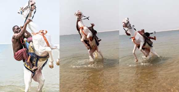 Tobi Bakre reacts to animal cruelty accusations after photos with horse